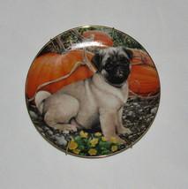 Pumpkin Patch Pug Danbury Mint Plate Puppy Dog Simon Mendez Limited Edition  - $15.83