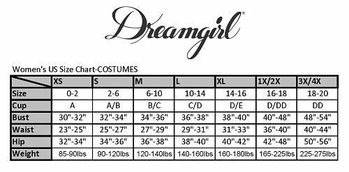 Dreamgirl Gypsy Crystal Ball Fortune Teller Adult Womens Halloween Costume Plus