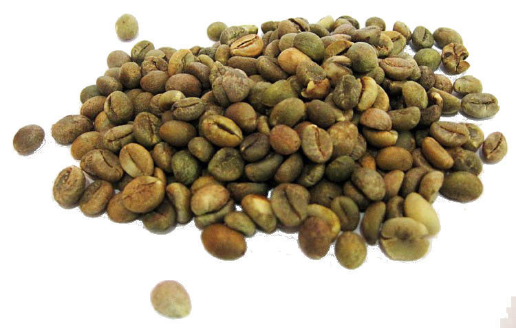 ISRAEL - KOSHER WHOLE and GROUND GREEN and ROASTED ARABICA COFFEE BEANS