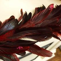 ZUCKER Dyed Bronze SCHLAPPEN Feather Garland RED image 4
