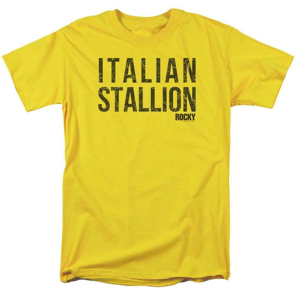 Rocky Italian Stallion T-shirt Logo Retro 70's 80's Movie Distressed tee MGM183