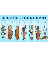 Bristol Stool Chart vinyl sticker cartoon poo poop medical advisory 25x14cm - $4.50+