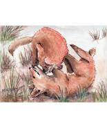 ACEO Original Painting Wrestling Foxes animals wildlife dog canine - $16.00