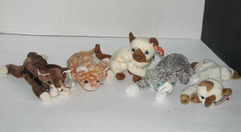 Ty Beanie Babies Set Of 5 Cats Snip Purr Pounce Siam Amber Plush Stuffed Toys - $21.76