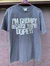 Walt Disney World - Grumpy  T-Shirt - Men's Medium  - $12.00