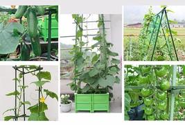 Plant Stakes Sturdy Garden Support Plastic Heavy Duty Green Gardener Sup... - €17,65 EUR+