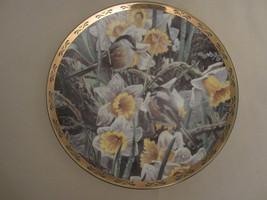 CHICKADEE collector plate THE GARDEN PARTY Alan Sakhavarz BIRD Songbird - $23.99