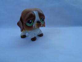 Littlest Pet Shop White / Brown Saint Bernard Puppy Dog Green Eyes #335 - $58,06 MXN