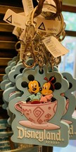 Disneyland Resort Exclusive Mickey and Minnie Mouse Tea Cups Park Life K... - $17.78
