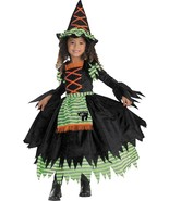 Toddller 3T-4T Story Book Witch Costume by Disguise/NWT - $39.55