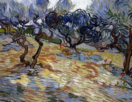 Olive Trees Painting by Vincent van Gogh Art Reproduction - $32.99+