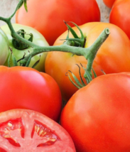 50 seeds Big Beef Tomato (F1 Hybrid) All american awards - $14.50