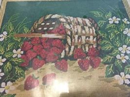 "Bucilla Needlepoint Strawberry Basket picture 16x18"" Kit 4900 new - $32.75"