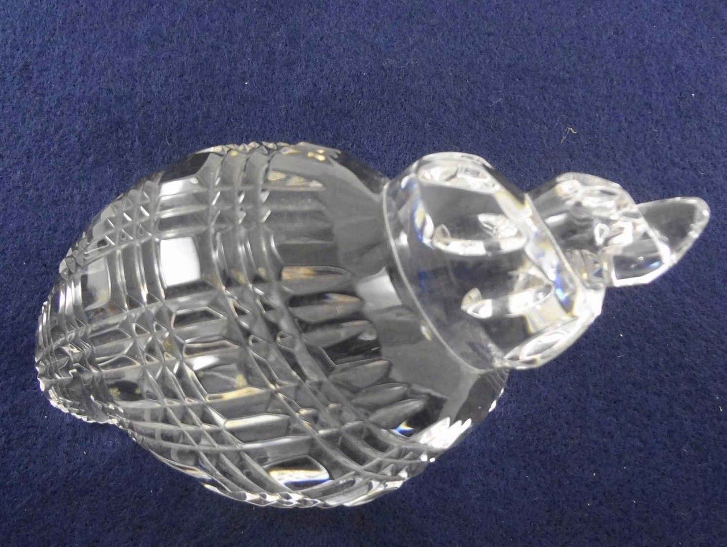 Waterford Crystal Conch Sea Shell Paperweight Hand Cooler Signed Wood Stand