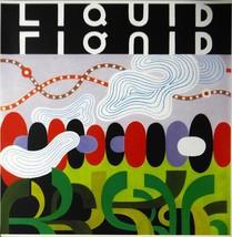 Liquid Liquid - Slip In and Out of Phenomenon (Album Cover Art) - Framed... - $51.00