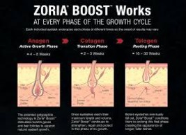 Zoria3 thumb200
