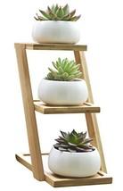 Jusalpha 3.2 Inches Ceramic Modern Decorative Small Round Succulent Plan... - $18.57