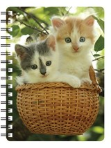 Two Kittens in a basket 3D picture  Notebook, Ideal Christmas stocking f... - $5.11