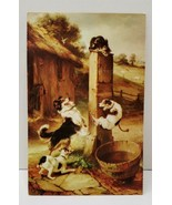BAFFLED by Walter Hunt English Art, Cats & Dogs Postcard C22 - $6.95