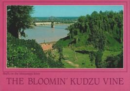Vintage Post Card - The Bloomin' Kudzu Vine Bluffs Mississippi River Pho... - $9.50