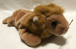 TY BEANIE BABY ROARY BIRTH DATE 2/20/1996, P.V.C. STYLE 4069 - NEW OLD S... - $9.99