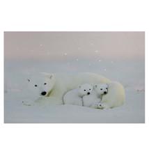 """Northlight Fiber Optic Lighted Mama Polar Bear Cubs Canvas Art 23.5"""" x 1... - $25.04"""