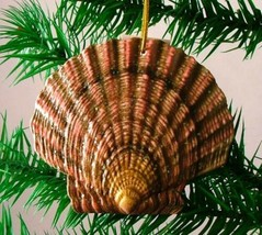 Tropical Beach Seashell Christmas Ornament Dark ORNShell11 Resin 4 Inches - $15.76
