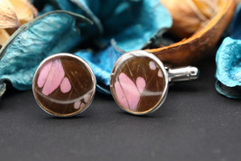 Navia Jewelry Butterfly Wings Graphium weiskei Round Cufflinks NCU-1W - $49.99