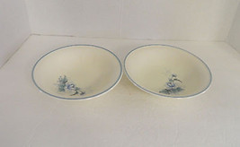 Keltcraft designed by Noritake Peonytime Ireland 9100 Coup Soup Cereal B... - $12.86