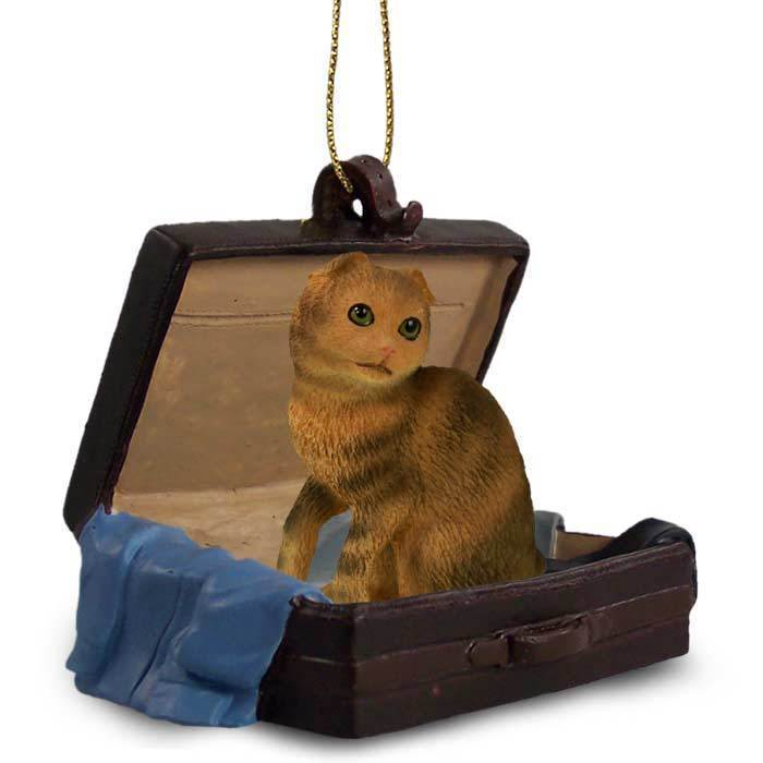 Primary image for Brown Tabby Scottish Fold Traveling Companion