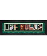 University of South Florida Officially Licensed Framed Campus Letter Art - $39.95
