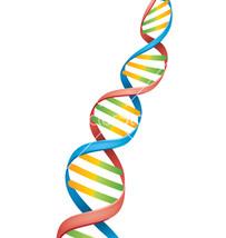 12 Strand DNA Activation Reiki - $11.06