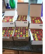 25 C9 Ceramic Replacement Bulbs (Red , Orange, Yellow) Holiday C-9 - $12.82