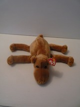 TY HUMPHREY the CAMEL Beanie Buddy Rare 1998 Retired Plush Stuffed Anima... - $17.82