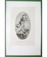 NUDE Spring Nymph Chases Winter Birds Cherub - 1882 Victorian Antique Print - $14.85