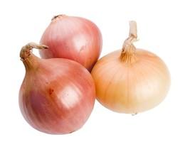 Onion Texas Early Grano Non GMO Heirloom Garden Vegetable Seeds Sow No G... - $1.97+