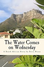The Water Comes on Wednesday [Paperback] Braun, Erica image 2