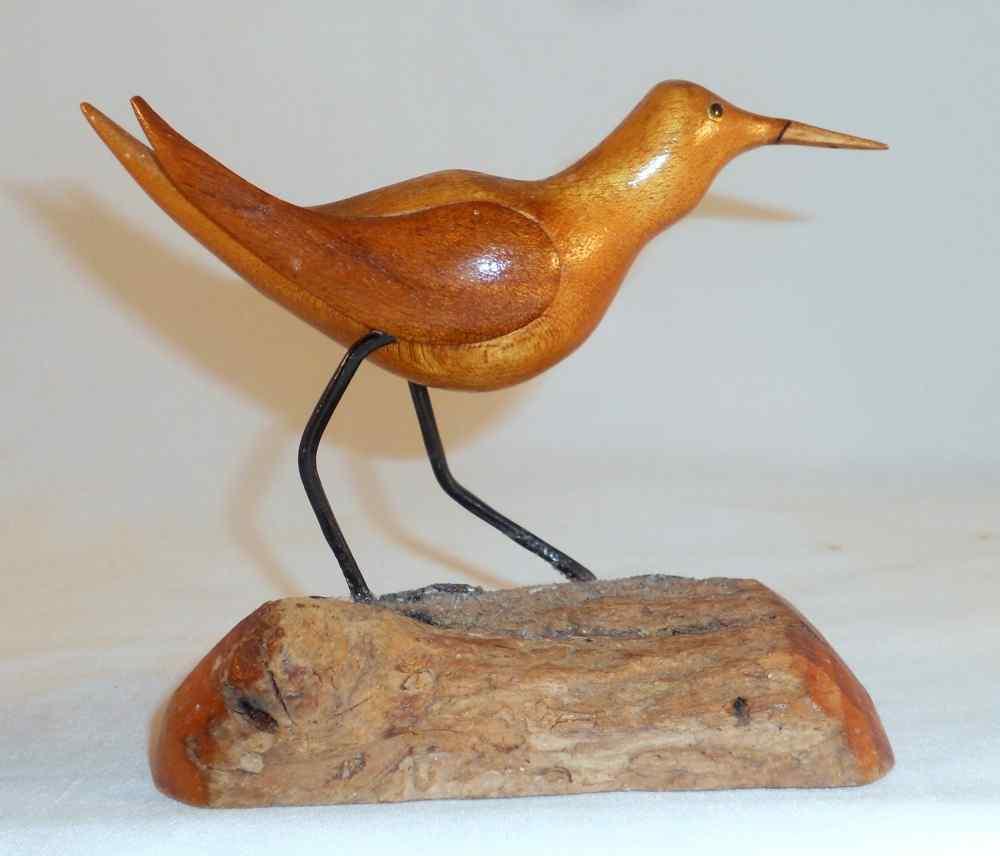 Shorebird7a