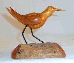 Shorebird7a thumb200