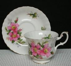 Lovely Royal Albert PRAIRIE ROSE Bone China FOOTED TEA CUP & SAUCER Engl... - $12.36