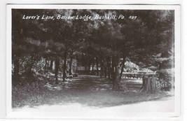 Lovers Lane Barrow Lodge Bushkill Pennsylvania 1950s RPPC Real Photo pos... - $6.44