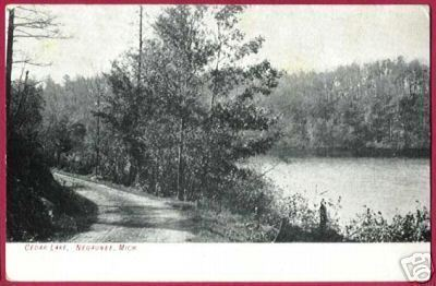 NEGAUNEE MICHIGAN Cedar Lake MI UP 1907 B&W