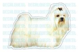 MALTESE-Dog Decal -sticker dogs car got graphic... - $4.89