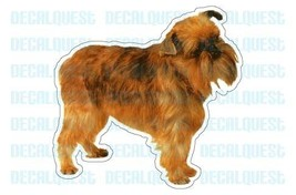 BRUSSELS GRIFFON-Dog Decal-sticker dogs car window - $4.89