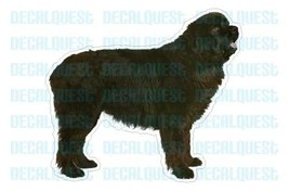 NEWFOUNDLAND-Dog Decal-sticker dogs car got window - $4.89