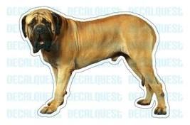 MASTIFF-Dog Decal-sticker dogs car got window - $4.89