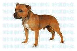 STAFFORDSHIRE BULL TERRIER-Dog Decal -sticker c... - $4.89