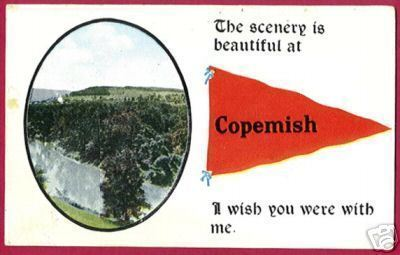 COPEMISH MICHIGAN Pennant PC MI 1915