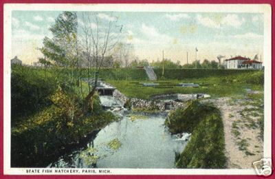 Primary image for PARIS MICHIGAN State Fish Hatchery MI