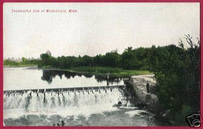 Primary image for MIDDLEVILLE MICHIGAN Thornapple Dam MI